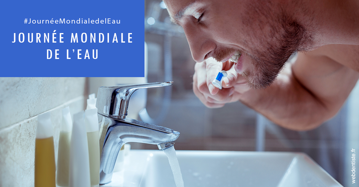 https://selarl-dentech.chirurgiens-dentistes.fr/Journée de l'eau 2
